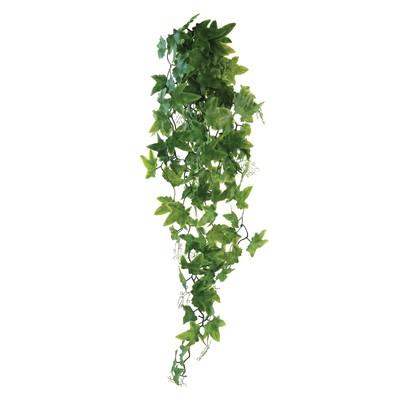 Растение «Виноград», 60 см