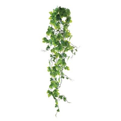 Растение «Плющ», 60 см